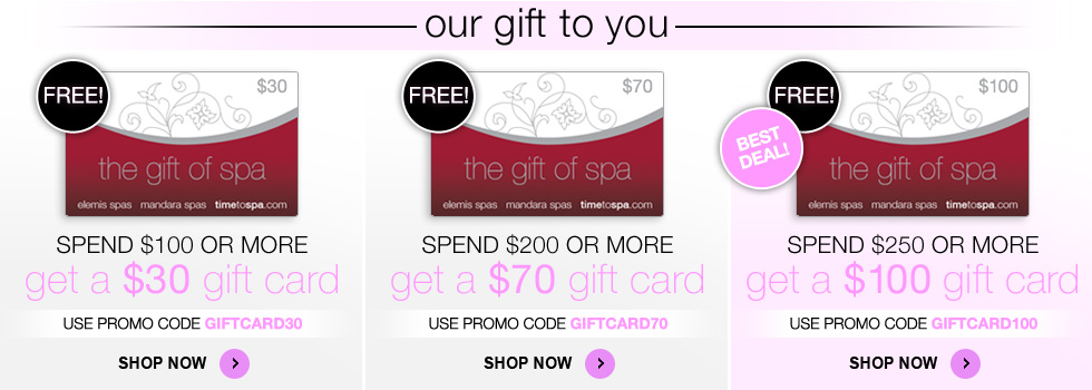 Spend $250 and get a free $100 gift card